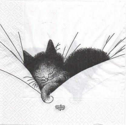 Serviette papier chat dormeur