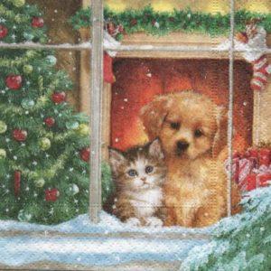 Serviette papier chien et chat 25 cm x 25 cm
