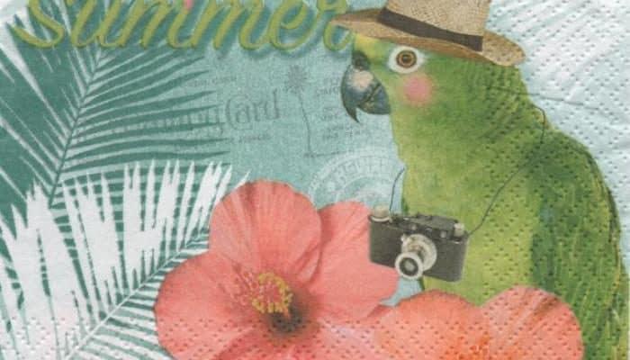 Serviette papier perroquet et fleurs