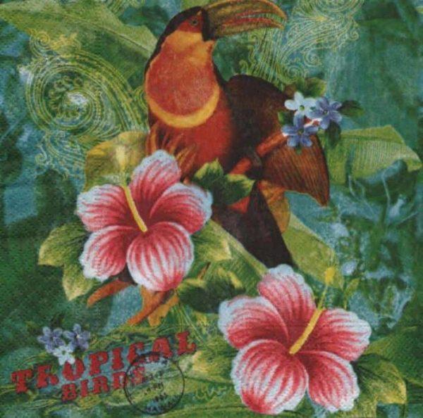Serviette papier oiseau tropical