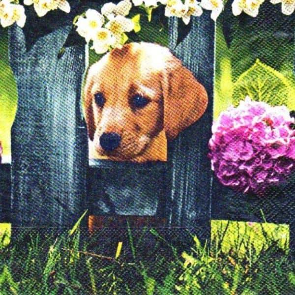 Serviette papier chien Basset à poil long 33 cm x 33 cm 3 plis