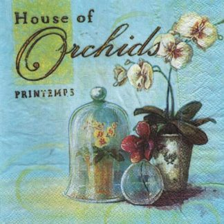 Serviette papier orchidée et Printemps 33 cm x 33 cm 2 plis