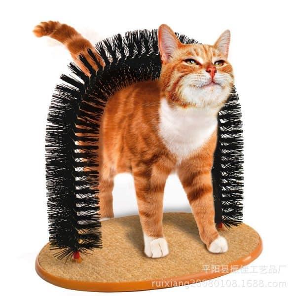 Brossemassage pour chat